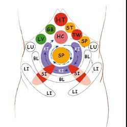 CHI NEI TSANG (Masaje abdominal) barcelona